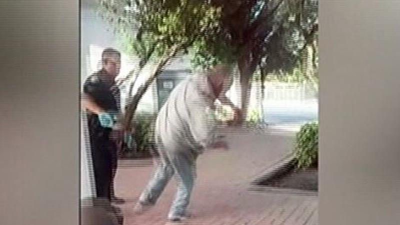 desamparado-policia