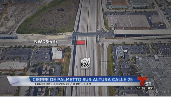 palmetto826