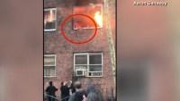 Dramático video: mascota se lanza por una ventana para huir de edificio en llamas