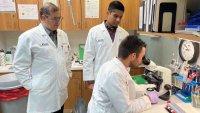 Resultados de estudio: ¿Impactan las vacunas de Pfizer y Moderna la fertilidad de los hombres?