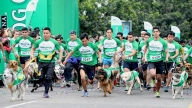 Perrotón de Lima reúne a 1,000 canes en carrera popular