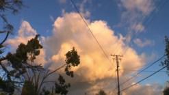 Zona central de California es golpeada por mal tiempo