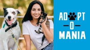 Adopta una mascota en Marlins Adopt-O-Mania