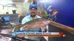 Del mar a tu mesa: la más amplia selección en el sur de la Florida