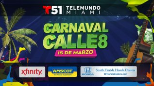 Carnaval Calle 8