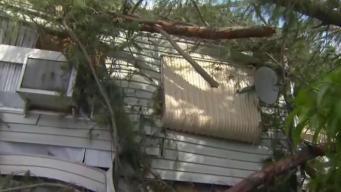 Irma deja destrozos en parque de casas móviles