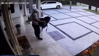 Ladrón captado en cámara robando silla para bebé