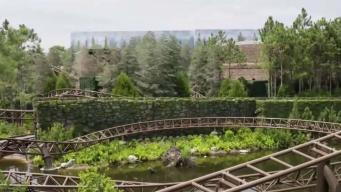 Nueva atracción de Harry Potter en Universal Studios