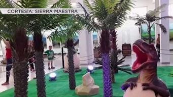 Reabre Museo de Historia Natural de Santiago de Cuba
