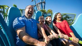 SeaWorld ofrece pase anual gratis para los maestros