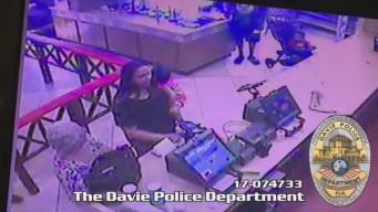 Davie Pollo Tropical Crash Footage
