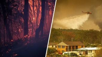 Australia: incendios infernales dejan muerte y destrucción
