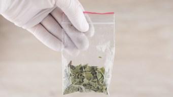 Reportan 2 muertos y 50 hospitalizados por falsa marihuana