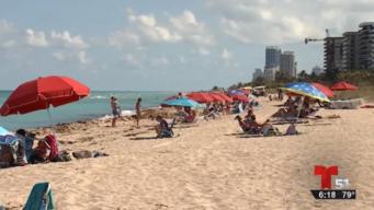 Las playas de Miami podrían privatizarse este verano