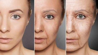 Revelan si algún día se podrá detener el envejecimiento