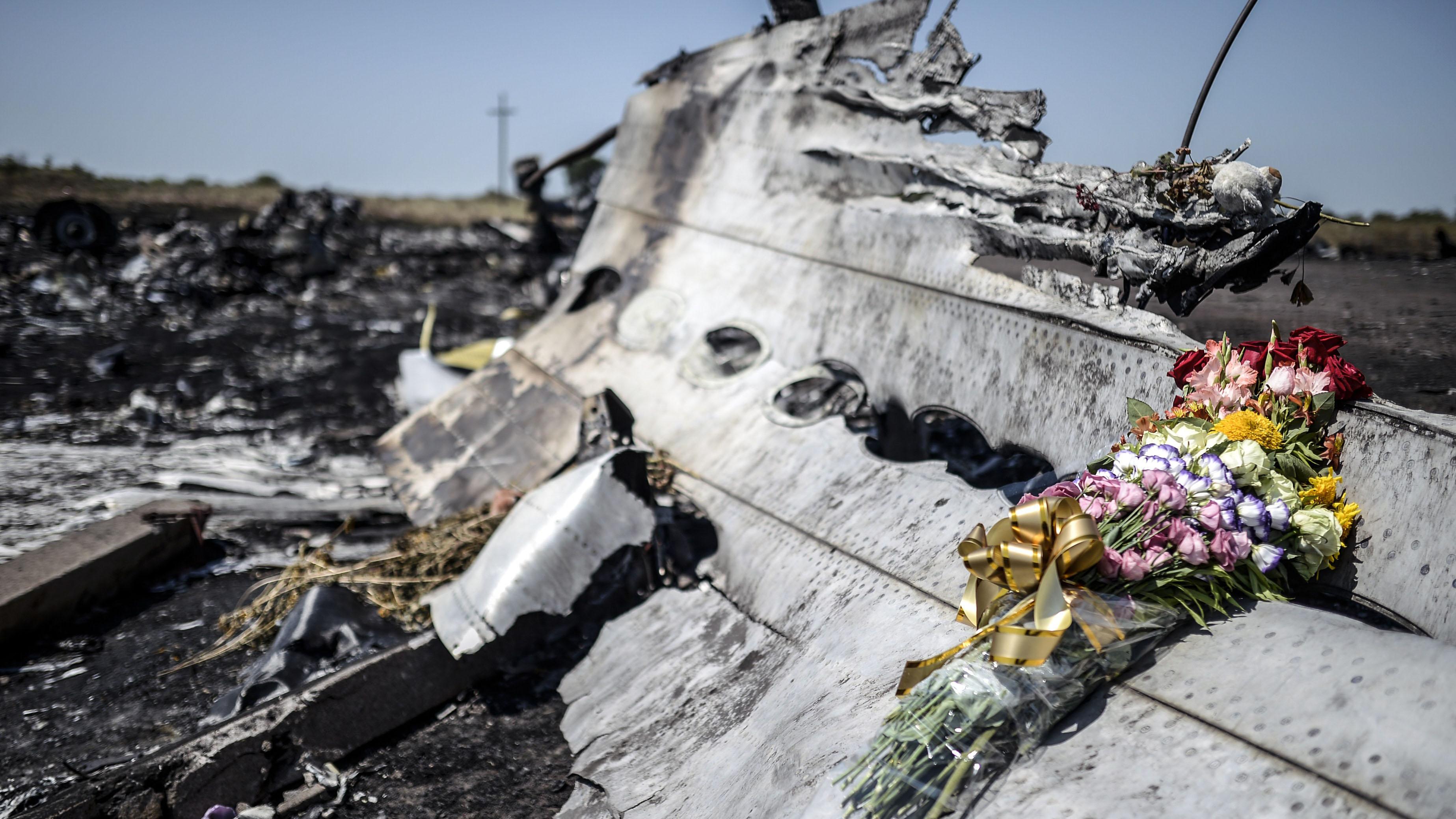 Посол Нидердандов рассказал, когда подготовят обвинительный акт по поводу катастрофы МН17