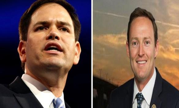Rubio y Murphy ganan primarias al Senado