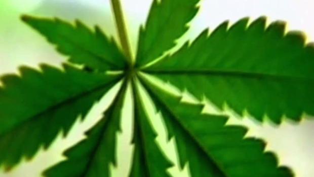 [TLMD - MIA] Acuerdo sobre fumar marihuana medicinal