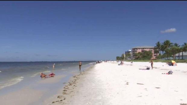 [TLMD - MIA] Algas tóxicas afectan turismo en Florida