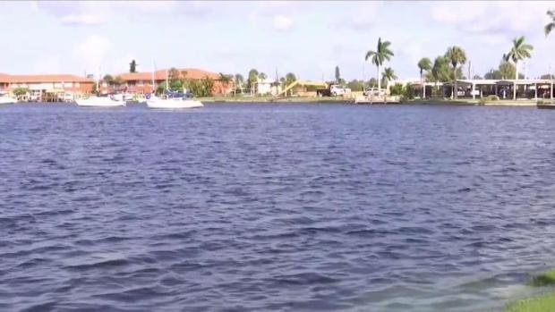 [TLMD - MIA] Algas tóxicas causan estragos en Cape Coral