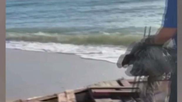 [TLMD - MIA] Balseros cubanos entran a Florida por Sunny Isles