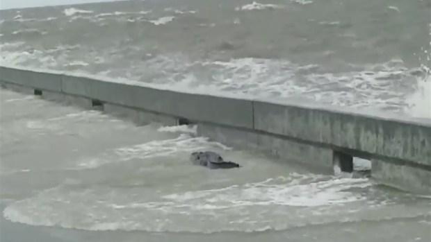 [TLMD - NATL] En video: caimán aparece en costa de Misisipi durante la tormenta tropical Barry