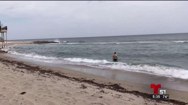 [TLMD - MIA] Cambian las reglas para la pesca en playas de la Florida
