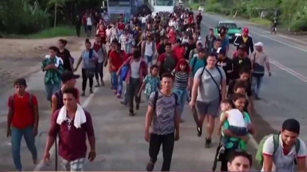 [TLMD - MIA] Comienzan audiencias de asilo político en frontera