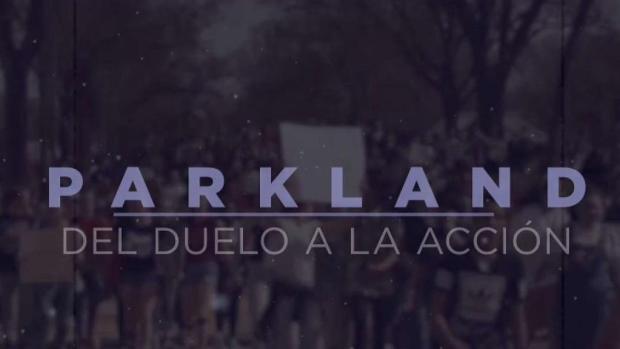 [TLMD - MIA] Parkland: del duelo a la acción