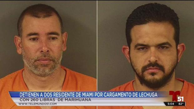 [TLMD - MIA] Detenidos por cargamento de marihiuana escondido en lechuga