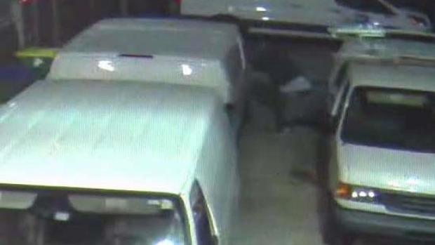 [TLMD - MIA] Vandalizan 10 vehículos oficiales de Miami-Dade