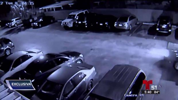 [TLMD - MIA] Vandalizan 14 autos y queda captado en video