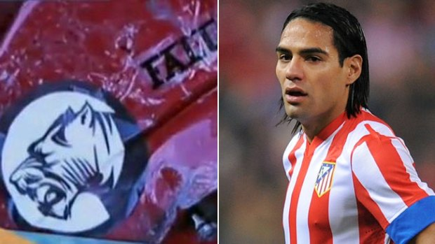 Video: Cazaron al tigre Radamel Falcao