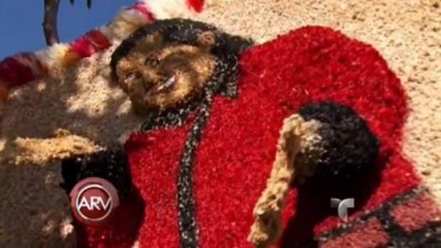 Video: Fiesta y mercadeo en tumba de cantante
