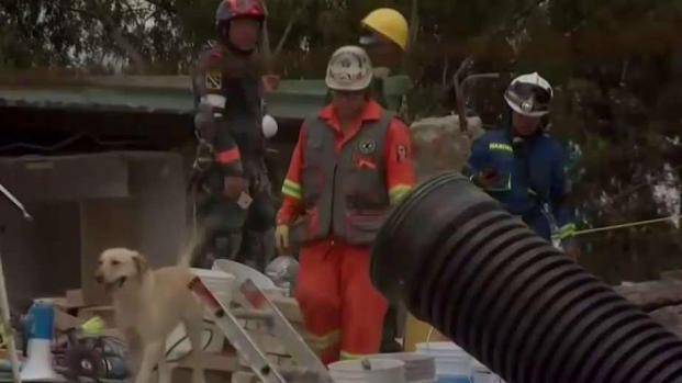 [TLMD - MIA] México intenta volver a la normalidad tras el terremoto