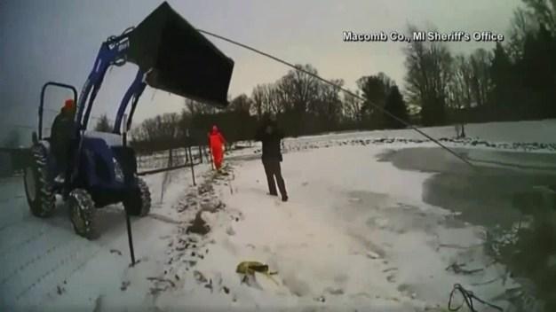 Rescatan a caballo de morir congelado en Michigan