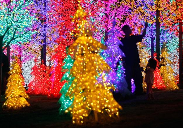 Guía de eventos festivos en el sur de Florida