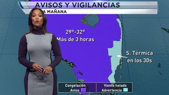 Ola de frío congela el sur de Florida