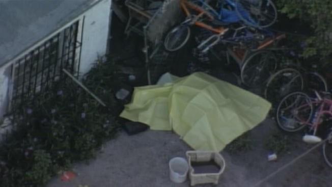 Miami: hallan a una mujer muerta a tiros