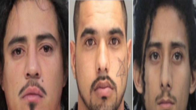 Miami: Desmantelan a una peligrosa banda