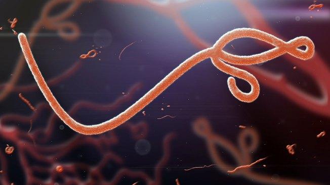 Tratamiento experimental contra el ébola