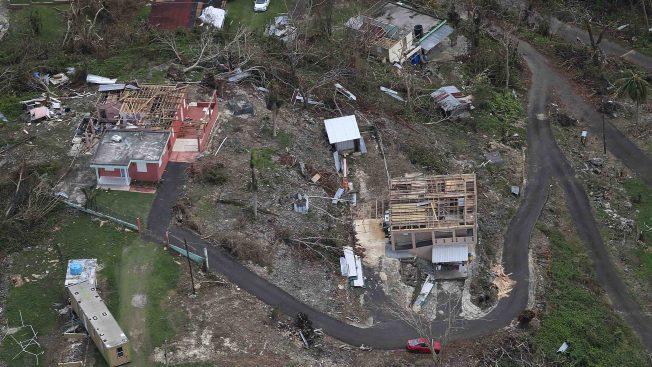 Puerto Rico: industria agrícola devastada tras paso de María
