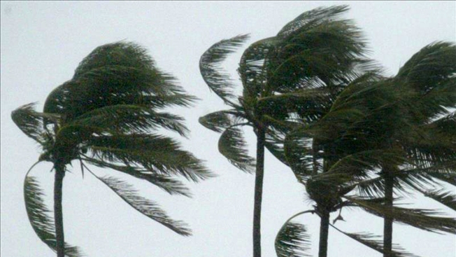 Preparativos para una tormenta: Una guía para su familia y su hogar