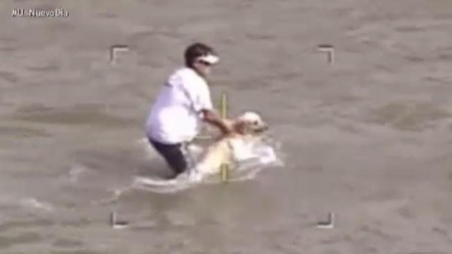 Rescatan a perro de un río dos veces