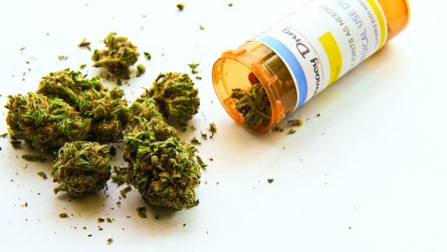 Dicen no a la marihuana medicinal