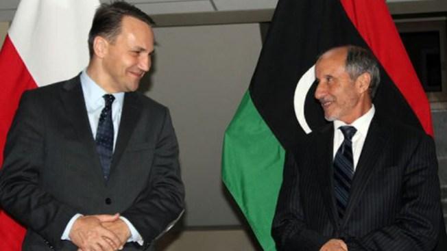 Piden que OTAN siga en Libia