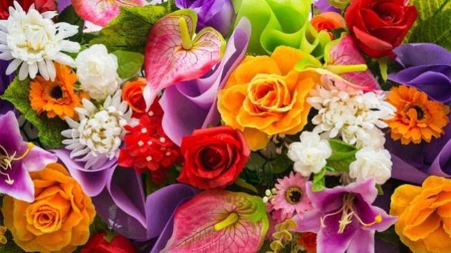 ¿Qué flores son las de tu signo zodiacal?