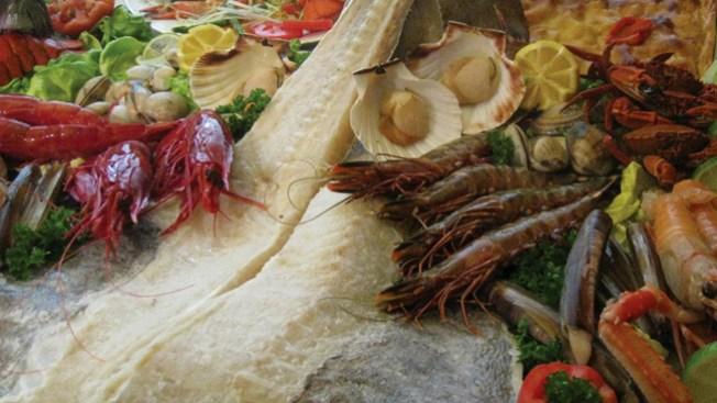 Coral Gables con sabor al Mediterráneo