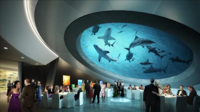 Miami tendrá nuevo Museo de Ciencias