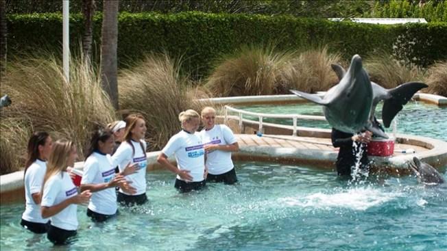 Dejan raquetas por delfines